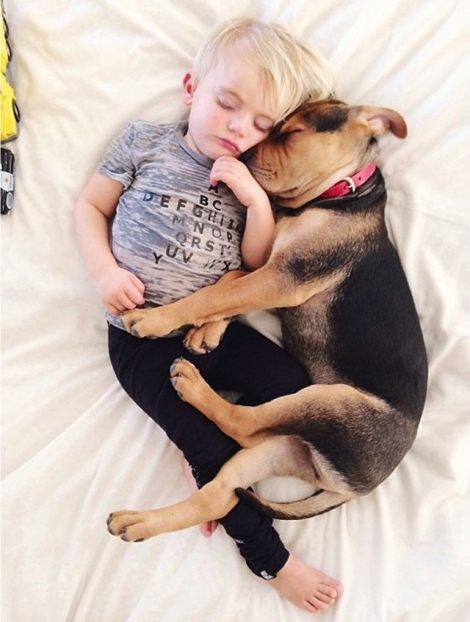 A-Naptime-Story-with-Dog-and-Baby-8