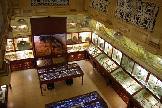 warrington-museum-050_gallery2