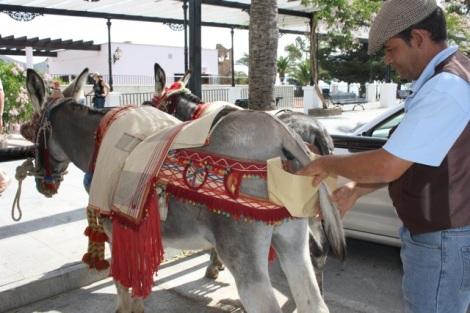 los-burro-taxis-volveran-a-circular-por-el-centro-historico-de-mijas-pueblo